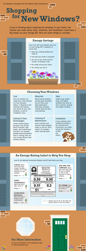 Shopping for New Windows Infographic